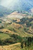 Abbellisca con l'azienda agricola della scala a libretto e la montagna con nebbia nella sera di estate a PA del Sa, Vietnam Immagini Stock Libere da Diritti