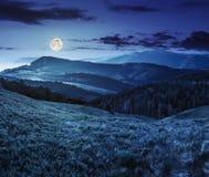 Abbellisca con la valle e la foresta in alte montagne alla notte Immagine Stock Libera da Diritti