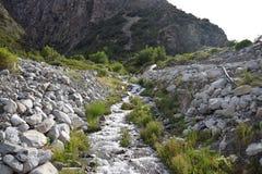 Abbellisca con le montagne e un fiume nella parte anteriore Bello paesaggio fotografia stock libera da diritti