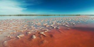 Abbellisca con una vista del lago di sale Fotografie Stock