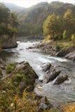 Abbellisca con velocemente ribolliree il fiume Chemal e le rapide chiamate Dragon Claws fra le rive rocciose coperte di foreste immagini stock libere da diritti