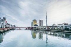 Abbellisca corridoio a birra dell'albero e di Asahi del cielo di Tokyo nella luce del giorno immagine stock libera da diritti