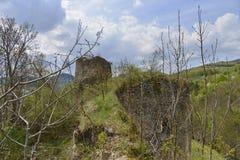 Abbellisca dalla parete della fortezza medievale di Bologa Fotografia Stock Libera da Diritti