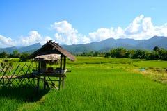 Abbellisca il giacimento verde del riso con la capanna e la montagna immagini stock libere da diritti
