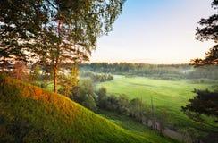 Abbellisca il panorama del River Valley con un pino solo sull'alta banca nella priorità alta ed i campi ed i prati e le foreste Immagini Stock