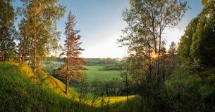 Abbellisca il tramonto di sera della foresta dei prati dei campi di River Valley di panorama fotografie stock libere da diritti