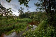 Abbellisca il tramonto di sera della radura della foresta dei prati dei campi di River Valley immagini stock libere da diritti