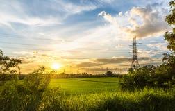 Abbellisca il tramonto sul giacimento del riso con il palo ad alta tensione nel middlefield e bei cielo blu e nuvole Immagini Stock Libere da Diritti