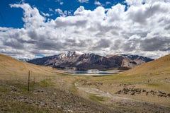 Abbellisca intorno al TSO di Kyagar vicino al TSO Moriri in Ladakh, India Fotografia Stock Libera da Diritti