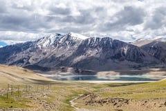 Abbellisca intorno al TSO di Kyagar vicino al TSO Moriri in Ladakh, India Immagine Stock Libera da Diritti