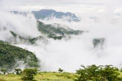 Abbellisca l'alba vaga nebbiosa e fantastica sulle montagne, supporto Fotografia Stock