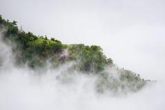 Abbellisca l'alba vaga nebbiosa e fantastica sulle montagne, supporto Immagine Stock