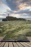 Abbellisca l'immagine del faro del Mawr di Twr con footpat erboso ventoso Fotografia Stock Libera da Diritti