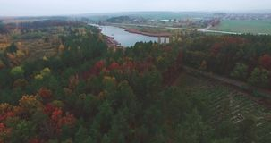 Abbellisca la foresta e le strade del fiume sull'orizzonte in tempo nuvoloso di autunno archivi video