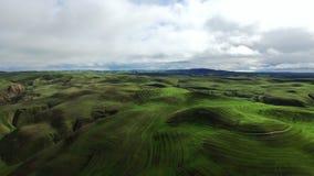 Abbellisca la vista dei prati e delle colline verdi dall'elicottero archivi video