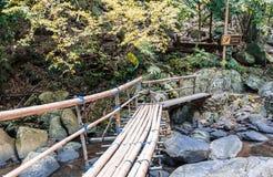 Abbellisca la vista del ponte di bambù attraverso la corrente dell'acqua, con il cauti Fotografie Stock
