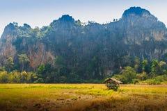 Abbellisca la vista della capanna dell'agricoltore nel giacimento del riso dopo raccolto con la gamma di montagne del calcare ed  Immagine Stock