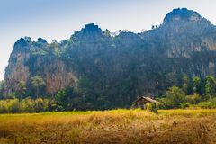 Abbellisca la vista della capanna dell'agricoltore nel giacimento del riso dopo raccolto con la gamma di montagne del calcare ed  Fotografia Stock
