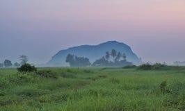 Abbellisca la vista delle risaie, il villaggio, il cocco, montagna durante l'alba immagini stock libere da diritti