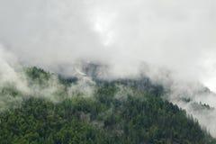 Abbellisca la vista scenica dell'alta montagna verde dell'abetaia nel minimo Fotografie Stock Libere da Diritti