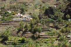 Abbellisca la vista sulla valle vicino alla città di Valle Gran Rey Fotografia Stock Libera da Diritti