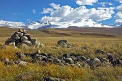 Abbellisca lo stepp, il plateau di Ukok, Altai, Siberia, Russia Fotografia Stock Libera da Diritti