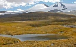 Abbellisca lo stepp, il plateau di Ukok, Altai, Siberia, Russia Fotografia Stock