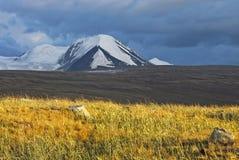 Abbellisca lo stepp, il plateau di Ukok, Altai, Siberia, Russia Fotografie Stock