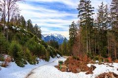 Abbellisca nelle alpi con i pascoli verdi freschi della montagna e nelle cime innevate della montagna nei precedenti Il Tirolo, A Immagine Stock Libera da Diritti
