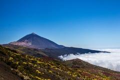 Abbellisca, panorama Teide, Tenerife, canarino immagine stock libera da diritti