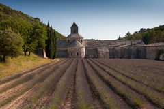 Abbey av Senanque, Gordes, Frankrike Arkivfoton