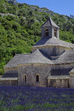 Abbey av Senanque, Provence, Frankrike Arkivfoto