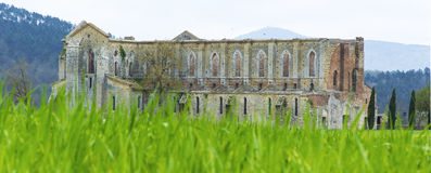 Abbey av St Galgano, Tuscany Arkivbilder