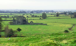 Abbey in Cashel. Rock of cashel - ruins of Ireland Stock Images