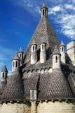 abbey de fontevro Royaltyfri Fotografi