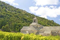 abbey de gordes provence senanque Royaltyfria Bilder