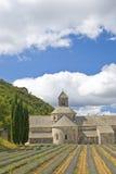 abbey de gordes provence senanque Royaltyfri Fotografi