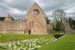 abbey dryburgh Fotografering för Bildbyråer