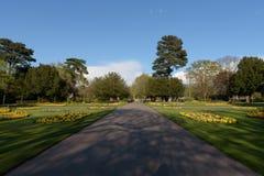 Abbey Gardens Fotografering för Bildbyråer