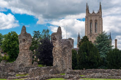Abbey gardens, Bury St Edmunds, Suffolk, UK. Ruins of Abbey garden with Church in background Stock Photos