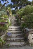 Abbey Gardens, Tresco, isole di Scilly, Inghilterra immagine stock