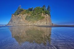Abbey Island in Ruby Beach in Olympisch Nationaal Park Stock Fotografie
