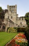 abbey kelso Fotografering för Bildbyråer