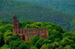 abbey limburg Royaltyfria Foton
