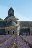 Abbey and Monastery of Senanque with Rows of Lavender, Provence Royalty Free Stock Photos