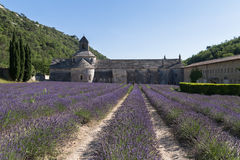 Abbey and Monastery of Senanque with Rows of Lavender, Vaucluse Stock Photo