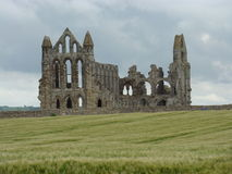 abbey norr whitby yorkshire Royaltyfri Fotografi