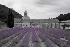 Abbey of Notre Dame of Senanque, Gordes Stock Photography