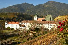 Abbey of Novacella, south tyrol, Bressanone, Italy. The Augustinian Canons Regular Monastery of Neustift. Red Roses in a vineyard near Abbey of Novacella, south Stock Photography