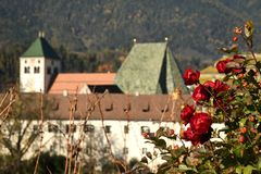 Abbey of Novacella, south tyrol, Bressanone, Italy. The Augustinian Canons Regular Monastery of Neustift. Red Roses in a vineyard near Abbey of Novacella, south Royalty Free Stock Photography